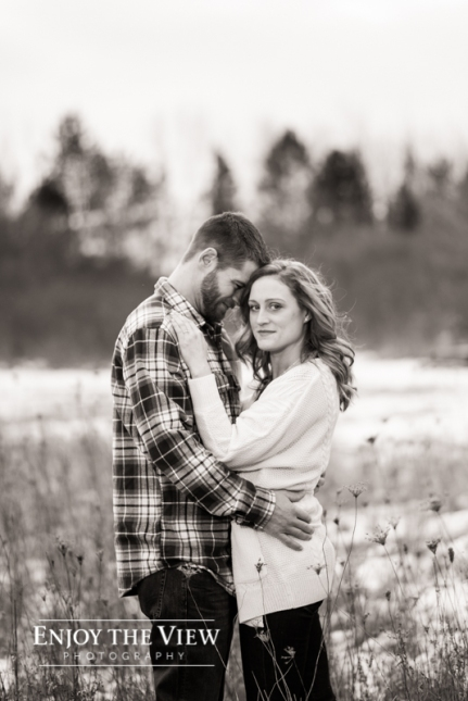 engagment photos near flint