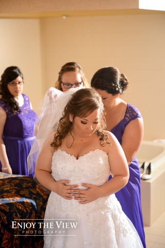 frankenmuth wedding photographers